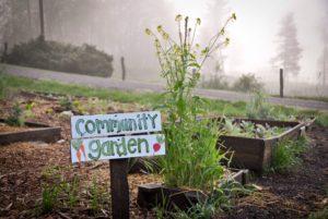 Garden Project Meeting @ Lower Level & garden